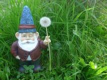 Gnomo do jardim com chapéu e o dente-de-leão azuis Imagens de Stock