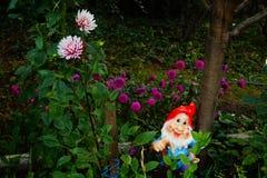 Gnomo en el jardín Imagen de archivo libre de regalías