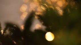 Gnomo en un árbol de navidad almacen de metraje de vídeo