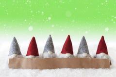 Gnomos, fundo verde, flocos de neve, espaço da cópia Foto de Stock