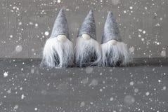 Gnomos mágicos, Gray Cement Wall, cópia Spaace, flocos de neve Fotografia de Stock