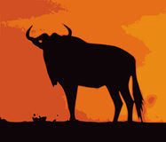 Gnu Royalty Free Stock Photos