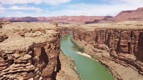 Gnuśny Kolorado Fotografia Royalty Free