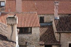 Gołąb na kominach nad czerwoni dachy miasto Fotografia Royalty Free