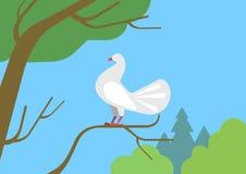 Gołąbka gołąb na gałąź płaskiej kreskówki dzikiego zwierzęcia wektorowym ptaku ilustracji