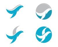 Gołąbka loga szablonu wektor Fotografia Stock
