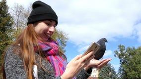 Gołąbka siedzi na ręce kobieta która ono uśmiecha się i photoes ja zdjęcie wideo