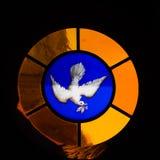 Gołąbka witrażu okno zdjęcia stock