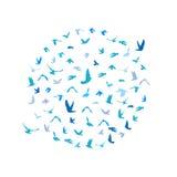 Gołąbki i gołębie ustawiający w okręgu dla pokoju pojęcia i ślubu projekta Latający błękitny ptaka nakreślenia set wektor ilustracja wektor