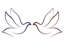gołąbki latanie Zdjęcie Stock