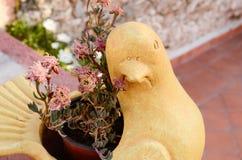 Gołębi flowerpot Obrazy Stock