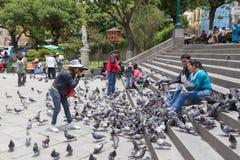 Gołębi karmienie na placu Murillo w losie angeles Paz, Boliwia Zdjęcie Stock
