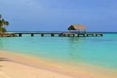 Gołębi punkt w Trinidad i Tobago fotografia stock