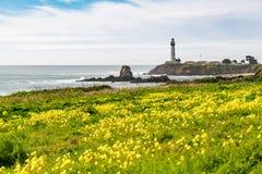 Gołębia punkt latarnia morska Zdjęcie Royalty Free