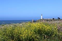 Gołębia punkt latarnia morska, CA Zdjęcie Stock