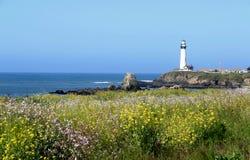 Gołębia punkt latarnia morska, Kalifornia Zdjęcia Stock