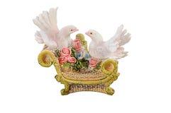 gołębie dekatyzują biel Zdjęcie Royalty Free