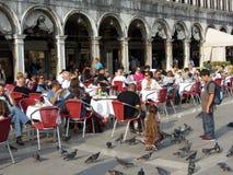 Gołębie i goście restauracji Fotografia Royalty Free