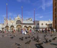 Gołębie i turyści odwiedza bazylikę Di San Marco, Wenecja, Włochy zdjęcie stock
