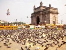 Gołębie przy bramą India Mumbai obrazy stock