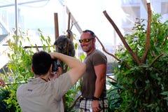 Gość bierze fotografię z koalą zdjęcie royalty free