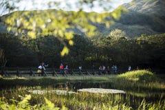 Goście biorą zdjęcia, cieszą się widok natura wokoło Yangmingshan góry Zdjęcia Royalty Free