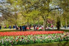 Goście w wiosny okwitnięcia Keukenhof parku w Amsterdam terenie, holandie Zdjęcia Stock