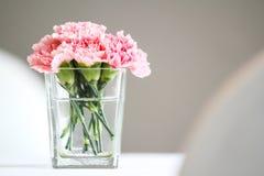 Goździków kwiaty fotografia stock