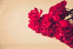 Goździków kwiaty i George Tasiemkowy zakończenie na ciemnym tle 9 kalendarzowy dzień może czerwony zwycięstwo Jubileusz 70 rok fotografia stock