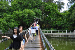Go bridge. The park a lot of people walking in the wobbly on the bridge Royalty Free Stock Photography