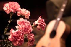 goździków gitary menchie Obrazy Stock