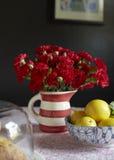 goździki czerwone fotografia stock