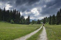 Go erforschen freie Natur Lizenzfreies Stockbild