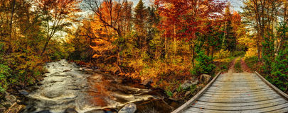 Go with the flow, or take the road less traveled. ATV bridge and trail over a flowing stream at sunset in autumn Royalty Free Stock Photos