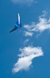Go Fly a Kite Royalty Free Stock Image