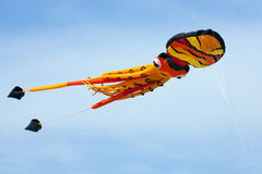 Go fly a squid kite Stock Images