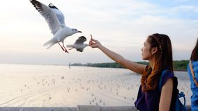 Go går Fotografering för Bildbyråer