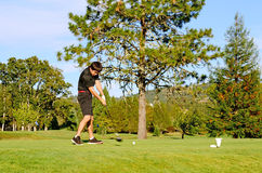 Go Golfing. Golfer enjoying the links on a late summer afternoon in Oregon Royalty Free Stock Photos