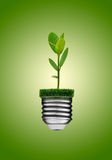 Go Green Concept. Light bulb and plant stock images