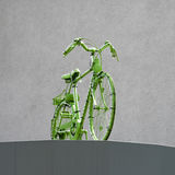 Go green concept - bicycle Stock Photography