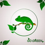 Go green concept with chameleon logo Royalty Free Stock Image
