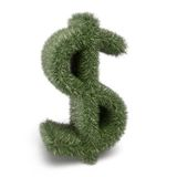 Go green Dollar sign on white Stock Image