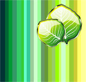 Go Green Leaf Background Stock Image