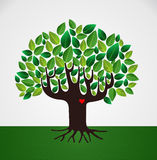 Go green love concept tree Royalty Free Stock Images