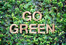 Go green made of wood word on leaves wall,Eco concept Royalty Free Stock Images