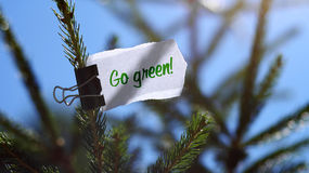 Go green message on fir tree. Torn white piece of paper on fir tree with go green message Royalty Free Stock Image