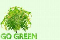 Go green Nature ecology organic concept Royalty Free Stock Photos