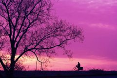 Go home. It is sunset ,one man is cyclisting to go home stock photo