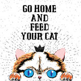 Go home and feed your cat. Sign with cute smiling cat. Motivational lettering on texture background. Inscriptions for pet lovers. Inspirational typographic Royalty Free Stock Image