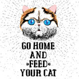Go home and feed your cat. Sign with cute smiling cat. Motivational lettering on texture background. Inscriptions for pet lovers. Inspirational typographic Royalty Free Stock Photography